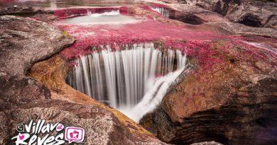 Prográmese para visitar las maravillas y el encanto de Caño Cristales en el Meta