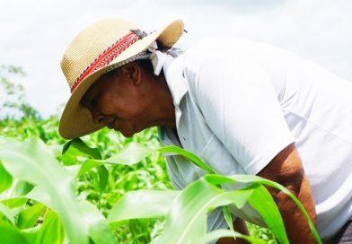 Abiertas postulaciones del Fondo Público de Desarrollo Local para productores agropecuarios